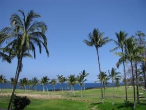 hawaii-tuesday-zip-mtakes-002